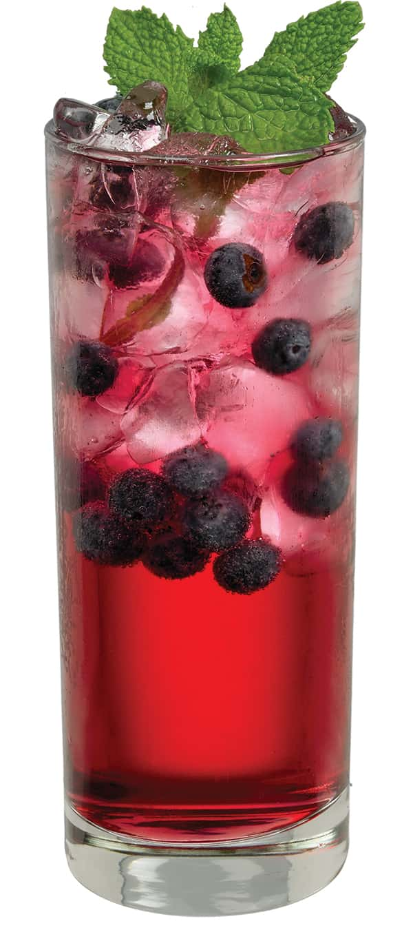 The blueberry mojito recipe is shown in a tall glass with blue liquid, ice, and blueberries.